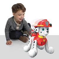 Интерактивный робот-щенок Зумер Zoomer Marshall
