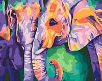 Картина раскраска Идейка Краски Индии (KH2456) 40 х 50 см