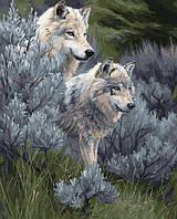 Картина раскраска по номерам без коробки Идейка Волчья пара (KHO2435) 40 х 50 см