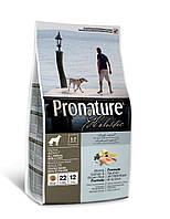 Pronature Holistic (Пронатюр Холистик) Dog ATLANTIC SALMON & BROWN RICE - корм для собак (лосось/рис), 2.72кг