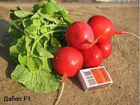Редис  Дабел F1/Dabel F1 Nunhems 10000 семян