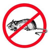 Дератизация-Уничтожение грызунов крыс, мышей