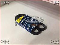 Ремень генератора Geely MK1 [1.6, -2010г.] E030000401 Meyle [Германия]