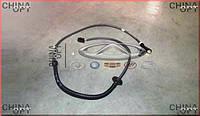 Датчик ABS задний, левый / правый, Chery Amulet [1.6,до 2010г.], 1709207180, OEM