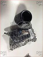 Пыльник заднего амортизатора Chery Amulet [1.6,-2010г.] A11-2911037 TECHNICS [Германия]