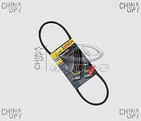 Ремень гидроусилителя (LF479, LF481) Lifan 520 [Breez, 1.6] LBA3407103 Bosch [Германия]