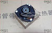 Опора верхняя переднего амортизатора Chery Tiggo [2.4, -2010г.,MT] T11-2901110 Febest [Германия]