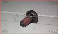 Болт крепления корзины сцепления, Chery Amulet [1.6,до 2010г.], A11-1601111, Aftermarket