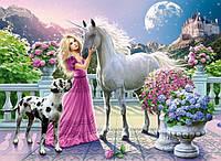 Набор алмазной вышивки Принцесса с единорогом 40 х 30 см (арт. FS401) , фото 1