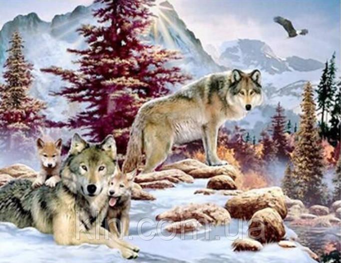 Алмазная вышивка Хозяева зимы 40 х 30 см (арт. FR403)