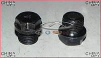Пробка сливная поддона, 477F, 473H, 484H, Chery Eastar [B11,2.4, ACTECO], 484J-1009014, Aftermarket