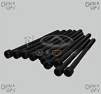 Болт головки блока цилиндров (4G18, 4G15, комплект) Lifan X60 [1.8] 1136000034 Elring [Германия]