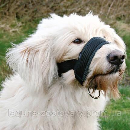 Намордник-недоуздок для собаки XL , фото 2