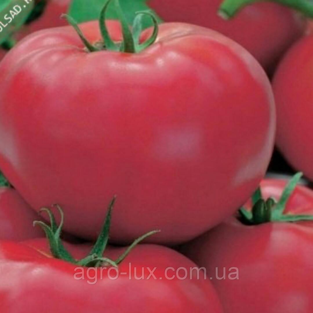 Семена томата Пинк Джаз F1 500 шт Hazera / Хазера