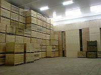 Овощехранилища, овочесховища, зберігання овочів
