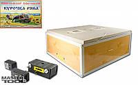 Инкубатор бытовой 80 яиц, автоматический переворот, цифровой, пласт. 600*600*240 мм Mastertool 92-08