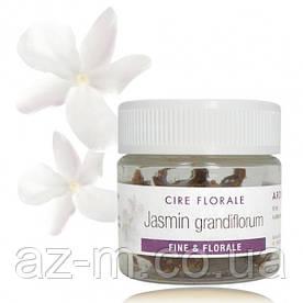 Цветочный воск Жасмин (Jasmin Grandiflorum), 10 г