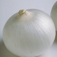 Семена лука Айс перл F1 250000 семян белая