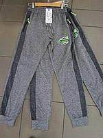Подростковые  спортивные штаны на мальчика GRACE
