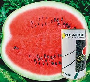 Арбуза Кримсон Свит семена /Clause (500 г) — среднеранний сорт с округлыми полосатыми плодами, фото 2