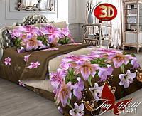 Евро комплект постельного белья TAG CY471