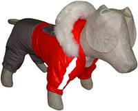Комбинезон для собаки зимний Дуэт Мопс, длина - 28 см, объем 60 см