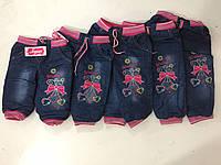 Теплые джинсы с вышивкой бантик 6мес-4года