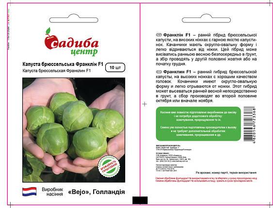 Семена капусты Франклин F1 (Бейо / Bejo / САДЫБА ЦЕНТР) 10 семян — ранняя (130 дней), брюссельская, фото 2