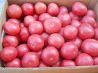 Буги-Вуги F1 семена томата индет. розового Элитный ряд 1 г