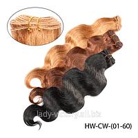 "Натуральные волосы ""Remy"" на трессах  HW-CW-(01-60)"
