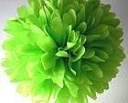 Бумага тишью салатовая 10 листов, фото 3