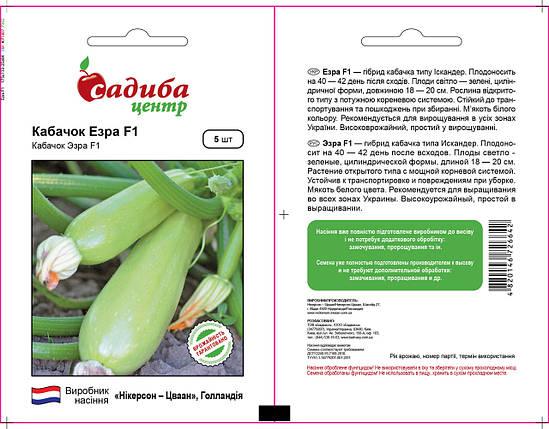 ЭЗРА F1 / EZRA F1 / Езра, 5 семян — кабачок, Nickerson Zwaan, фото 2