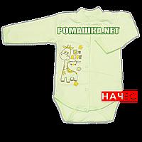 Детский боди с длинным  рукавом р. 68 с начесом ткань ФУТЕР (байка) 100% хлопок ТМ Алекс 3188 Зеленый3