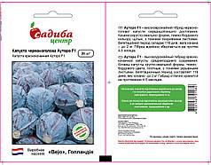 Семена капусты Ауторо F1 (Бейо / Bejo / САДЫБА ЦЕНТР) 20 семян - поздняя (135 дн), для хранения,краснокочанная