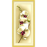 Нежность орхидеи-2. Набор алмазной живописи (круглые камни, полная)