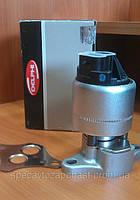 DELPHI DE EG10004-12B1 клапан EGR на Opel Vectra
