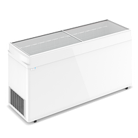 Ларь морозильный F 700 C