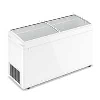 Ларь морозильный F 600 E