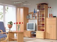 Мелкий бытовой ремонт мебели и техники