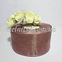 Лента из органзы, шир. 5 см, цвет каппучино, 1м