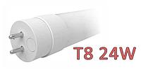 Светодиодная лампа G13 Т8 Elm 24W LT-144 6500K(холодный)