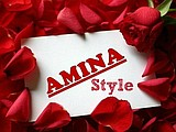 "интернет-магазин ""Amina Style"""