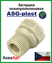Заглушка резьбовая ппр 1/2 короткая ASG-Plast (Чехия)