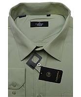 Рубашка мужская Cabanna CA-901