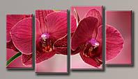 Картины модульные Бордовая орхидея