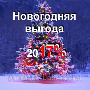 Новогодняя выгода 2017
