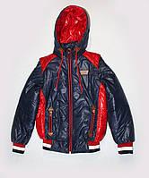 Куртка-жилетка демисезонная на подростка темно-синяя с красными вставками, 34 размеры