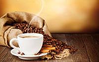 Захоплююча подорож кавового зернятка