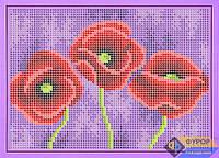 Схема для вышивки бисером - Прекрасные маки, Арт. ДБч5-061
