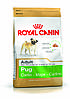 Royal Canin Pug Adult - корм для собак породы мопс с 10 месяцев 3 кг